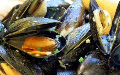 Mossels eten op zaterdag 9 november